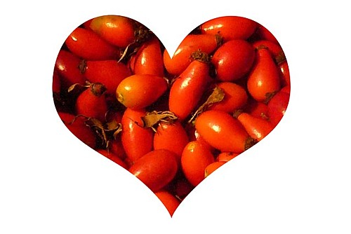 Organic Health And Beauty - Rose hips