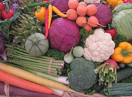 Aquaponic gardening vegetables