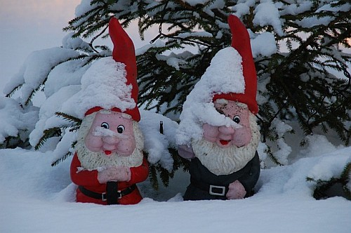 Compost Bin Plans - Gnomes