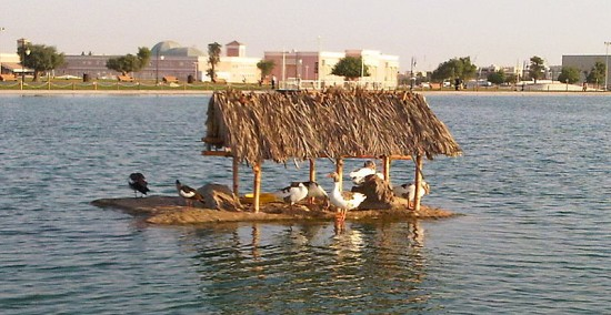 Eco Friendly Products Showcased in Doha - Goose House, Doha