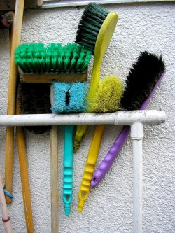 Environmentally friendly cleaning products - Cleaning brushes