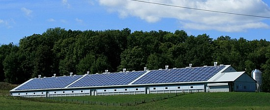 Green Homes - Buying Tips -Solar powered barn
