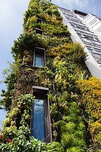 - Green Homes Design -