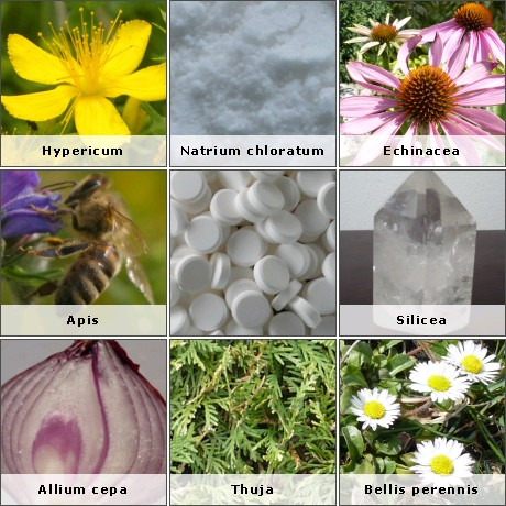 Homeopathic remedies definition image