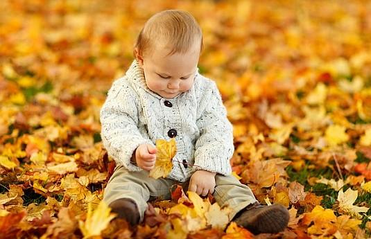 - Organic Vegetable Gardening Tips For Kids -