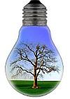eco-kids earth hour - eco bulb