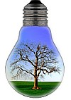 eco-kids earth hour - eco bulb