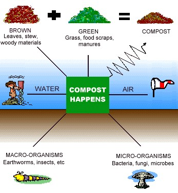 how to compost at home - how to make a compost