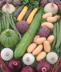 natural pesticides for vegetable gardens - vegetables 3