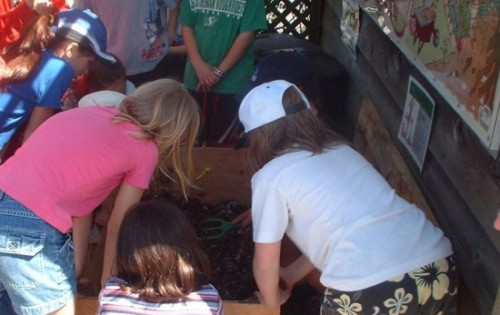 worm composting videos kids - vermicomposting